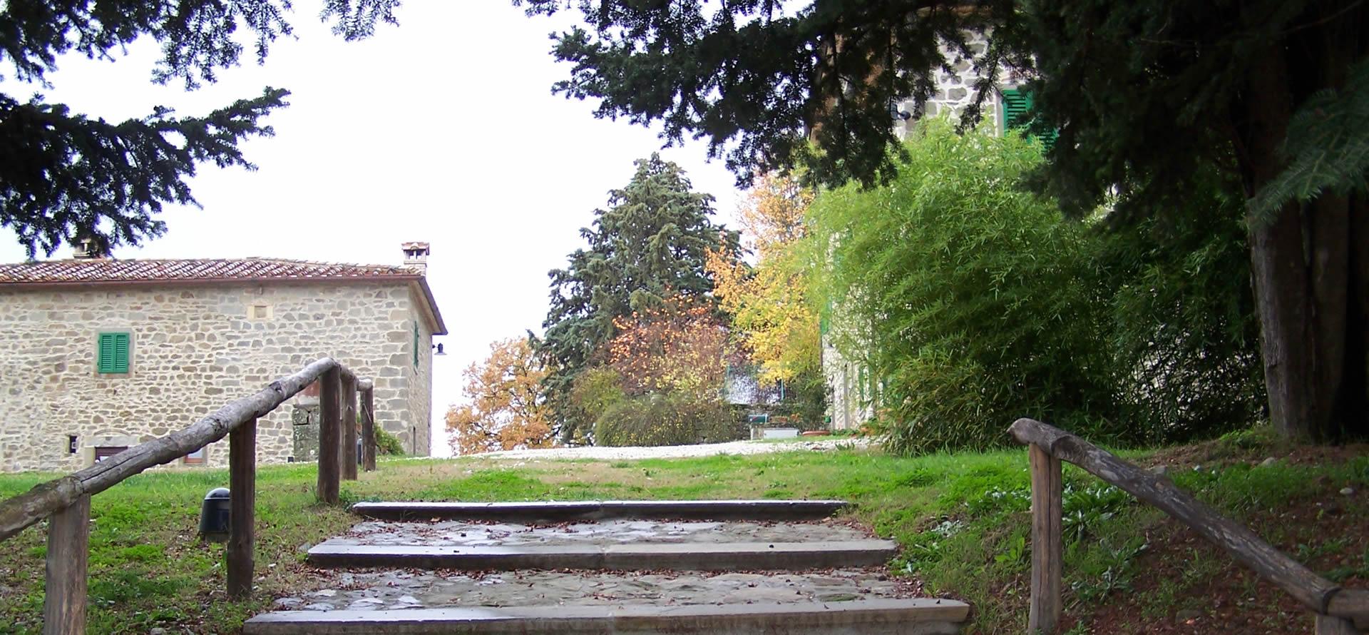 boschi-caprese-michelangelo-agriturismo