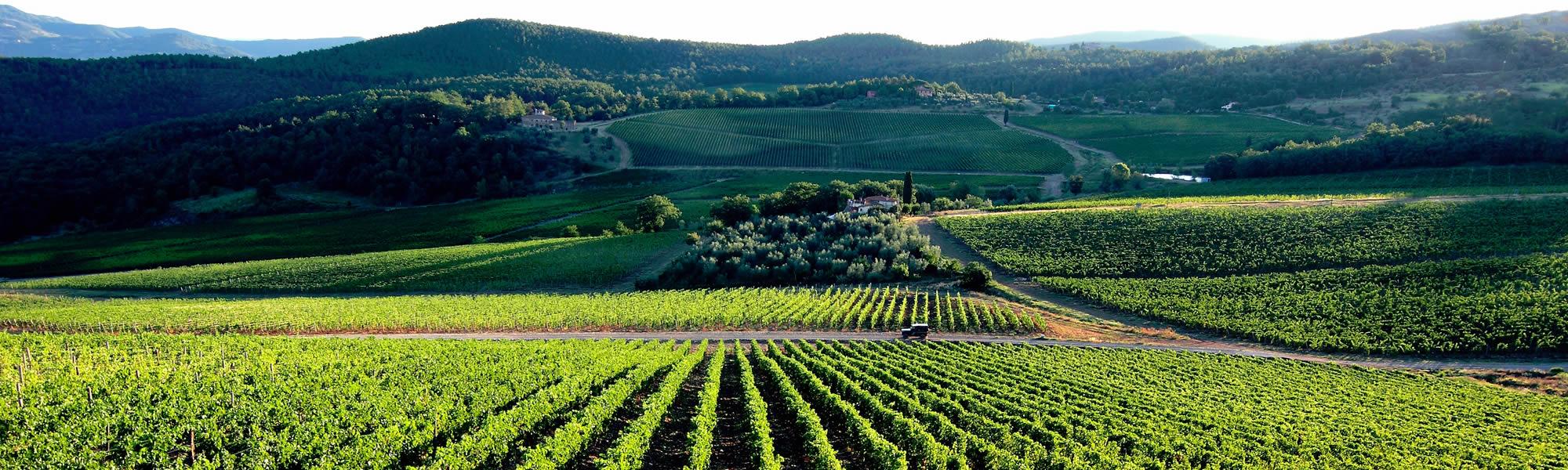 Gite di un giorno in Toscana